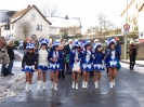Karnevalsumzug_2008_35