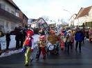 Karnevalsumzug_2008_46