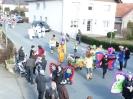 Karnevalsumzug_2011_119