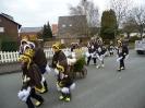 Karnevalsumzug_2014_Teil2_16