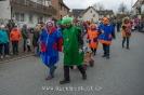 Karnevalsumzug_2016__92