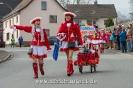 Karnevalsumzug_2017__74